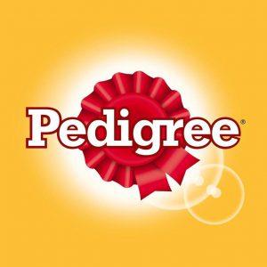 pedigree-chum